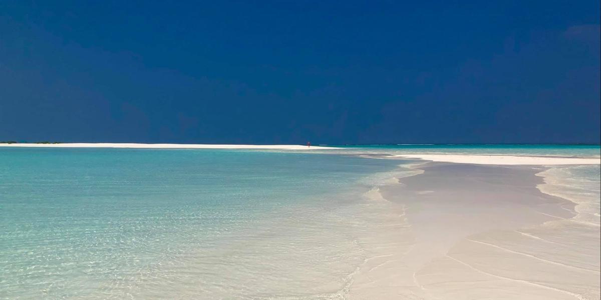 - MALDIVE IN GUEST HOUSE 2020